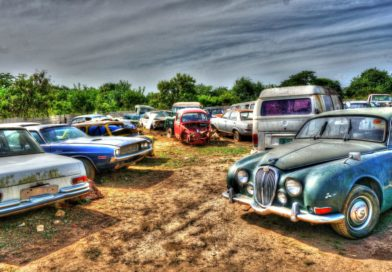 Classic Cars in a Field in Jamaica ( Jaguar, Benz, Challenger, Porsche, Morris, Mustang and More